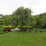 Romantischer Kräutergarten 4