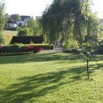 Romantischer Kräutergarten 2