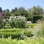 Romantischer Kräutergarten 10